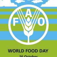 Read World Food Day and Local Food: A Search for Solutions