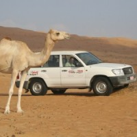 Read Explore Oman with a Responsible Local Travel Leader