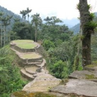 Read Colombia's Call: From a Lost City to the Amazon with Mambe Travel