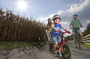 Read Family Travel by Bicycle