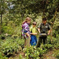 Read Family Travel and Responsible Tourism