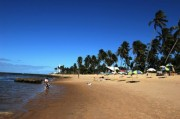 Read The Natural Gem of Praia do Forte, Brazil, Joins the Ranks of whl.travel