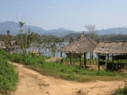 Read The Fight For Survival: Elephants in Laos