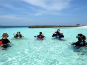 Read Sustainable Development and Ecotourism in Maldives