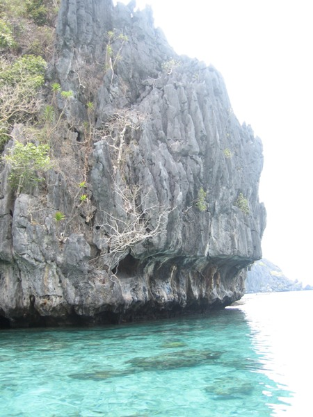 The Palawan lagoons are known for spectacular visual treats both  above and beneath the waters. Here, they are surrounded by magnificent  limestone formations.