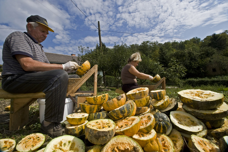 Locals in Pince collect pumpkin seeds for making their renowned pumpkin-seed oil