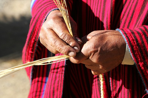 Photo of the Week (7 February 2010) - The hands of Demetrio Limachi, a famous traditional Bolivian boat builder