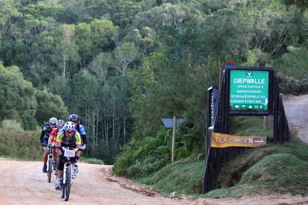 The ancient, indigenous forests of Knysna make the Pick n Pay Weekend Argus Rotary Knysna Cycle Tour a particularly scenic and popular race in South Africa