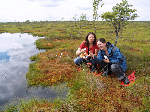 In Estonia's Soomaa National Park, when there are no raised paths, special bogshoes aid with trekking through a watery fairytale landscapes. Here, travellers study plant species.