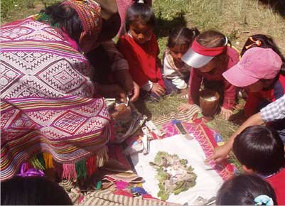 Children in Sacred Valley learn about an ancestral coca leaf ceremony