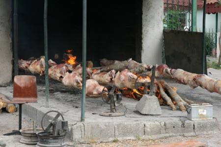 In the mountains of Albania, roasted lamb is the local speciality.