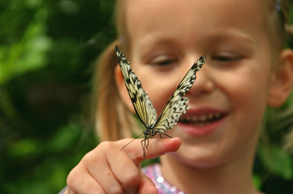 Irene Lane Butterfly How Children Benefit from an Ecotourism Experience