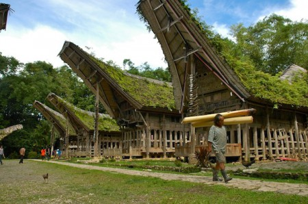 A village of traditional Toraja houses, called Tongkonan houses, found in Tana Toraja highlands of Sulawesi, about 300 kilometres north of Makassar, Indonesia
