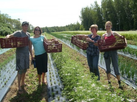 Slow Travel work exchange- WWOOF volunteers in Canada
