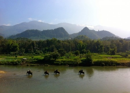 Laos_The Elephant Village