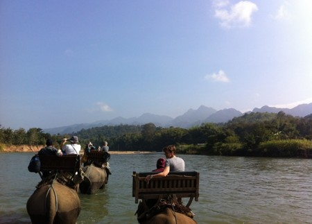 Laos elephant ride 450x323 From Logging to Tourism: A New Deal for Asian Elephants in Laos