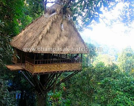 whl.travel ecolodges - Treetop Hotel in Champasak, Laos