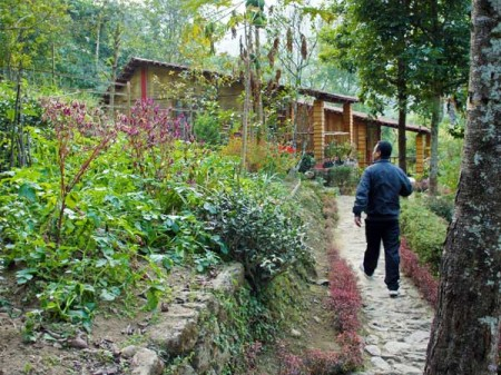 remote lodging- Tathagata Farm near Darjeeling, India