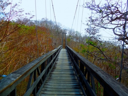 The hanging bridge to Morgan's Rock, Nicaragua