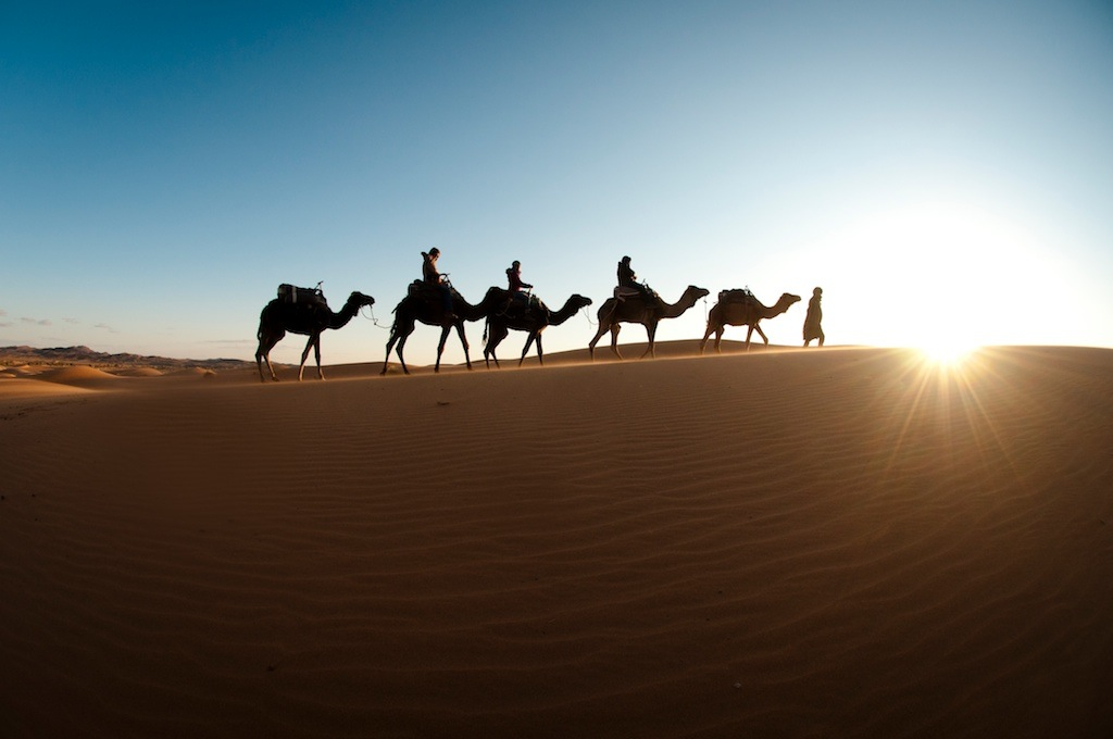 A camel caravan traversing Erg Chebbi in the Sahara Desert of Morocco