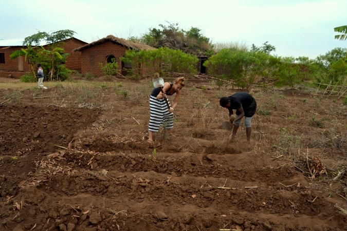 Alice Tilton helps in the fields of her homestay in Malawi