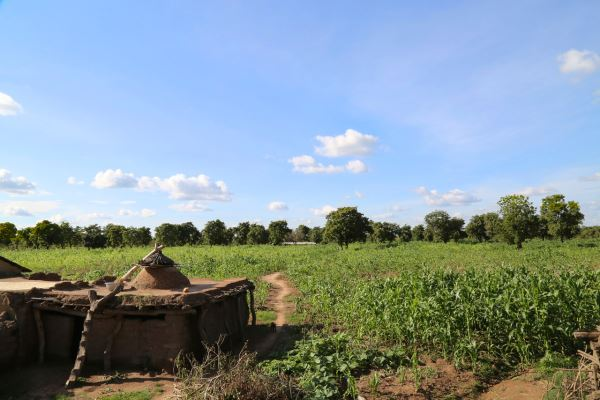A traditional compound home in the rural north of Ghana