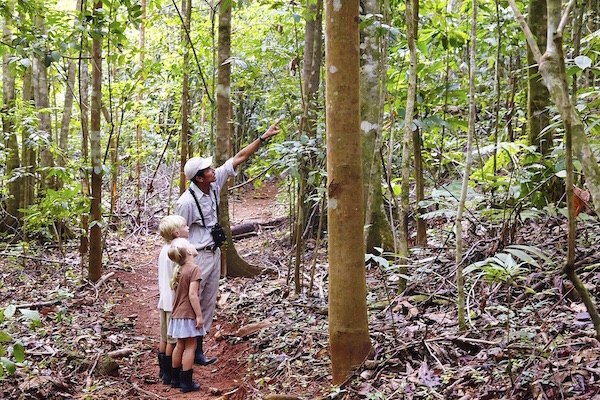 Ecotourism and family travel in Costa Rica: a nature guide with kids in a Costa Rican forest
