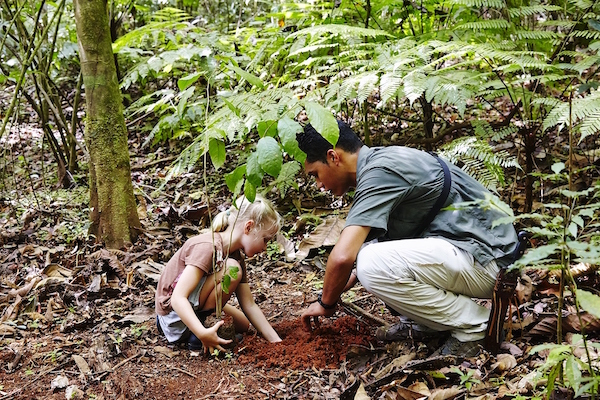 Ecotourism and family travel in Costa Rica: a child planting a tree with a guide in a Costa Rican forest