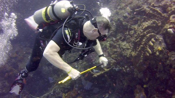 Paul Zanelli back in diving action in Dominica