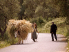 11 April 2010 - Now and then: tradition in Corfu, Greece
