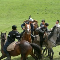 Read Top Five Horse Sports in Asia