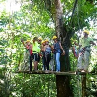 Read Zip Lines in Costa Rica: A Sustainable Alternative to Deforestation