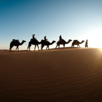 Read A Pictorial Journey and Photography Workshop in Morocco