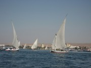 Read Top 10 Things to Do in Cairo, Egypt