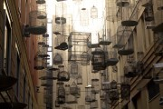Read Photo of the Week: Angel Place Birdcages, Sydney, Australia