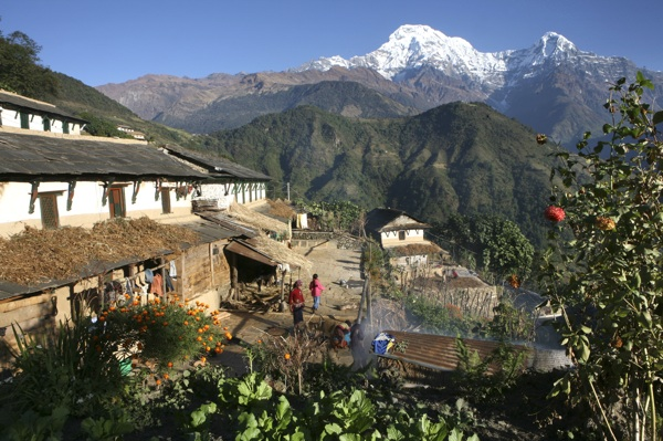A 15-day Annapurna Trails and Homestay trip with the Responsible Travellers (who invest all their profits in local charities, www.theresponsibletravellers.com) takes in traditional houses like those pictured here. The whl.travel connection in Nepal (www.pokharahotel-link.com) also organises responsible tours in the area.