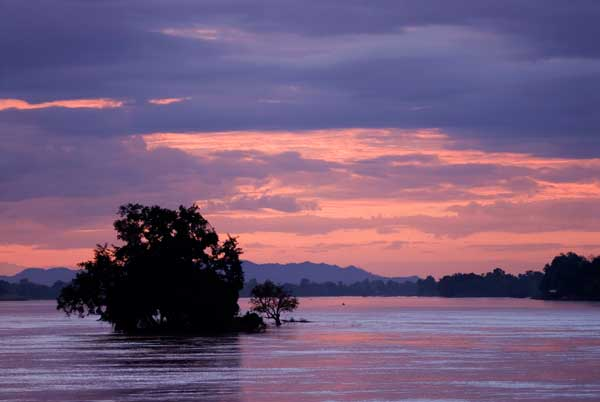 At sunset over the Mekong River in Si Phan Don, Laos, a nearly submerged tree is all that remains of one of the four thouand islands and shows the huge increase in water levels experienced during the rainy season