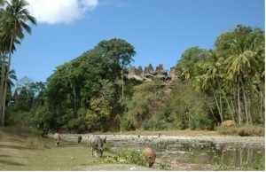 A traditional village of Sumba beautifully settled on a hill overlooking a riverbank