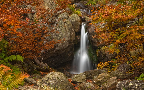 A hidden waterfall in the Central-Balkan National Park of Bulgaria provides a stark contrast to the warm colours of the surrounding autumn leaves (photo by Evgeni Dinev)