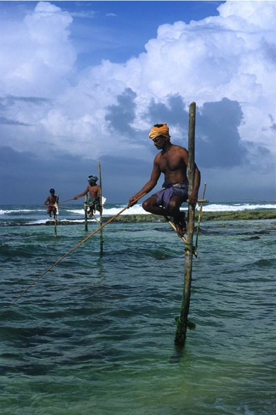 Along the coastal route between Galle and Hambantota, stilt fishermen are a common sight
