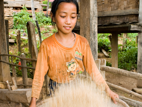 Photo of the Week (12 September 2010) - Sifting Rice for the Day in Muang Sing, Luang Namtha, Laos