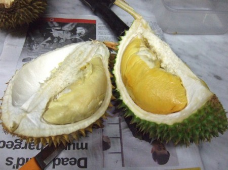 The stinky durian is the king of all fruits