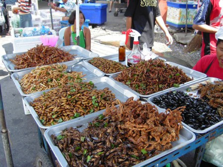 A common sight in Thailand's Bangkok markets is this deep-fried insect food stall