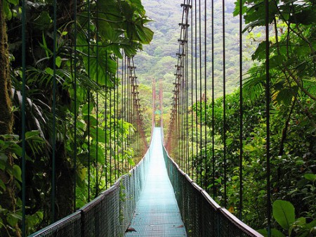 The rainforest that surrounds Monteverde, Costa Rica draws tourists and naturalists from all over the world.