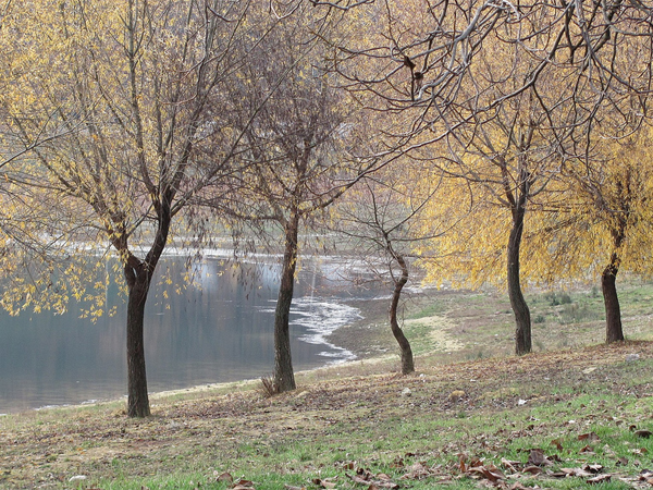 Photo of the Week (01 May 2011) - Autumn at Tsiganesti Monastery, Moldova