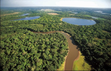 South Pantanal, Brazil, is home to the largest wetland in the world