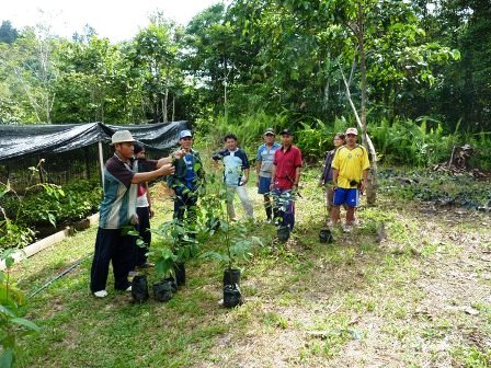 Ceremonial first tree planting
