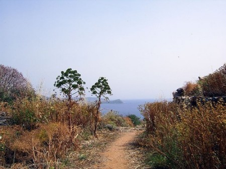 Footpath in southern Peloponnese, Greece