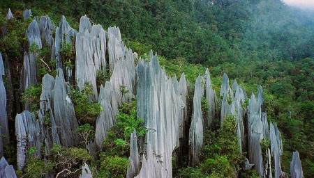 favorite landscape- oshin chin pinnacles of Mulu, Borneo Malaysia