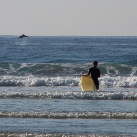 Learn to surf at Coffee Shack Backpackers, SA